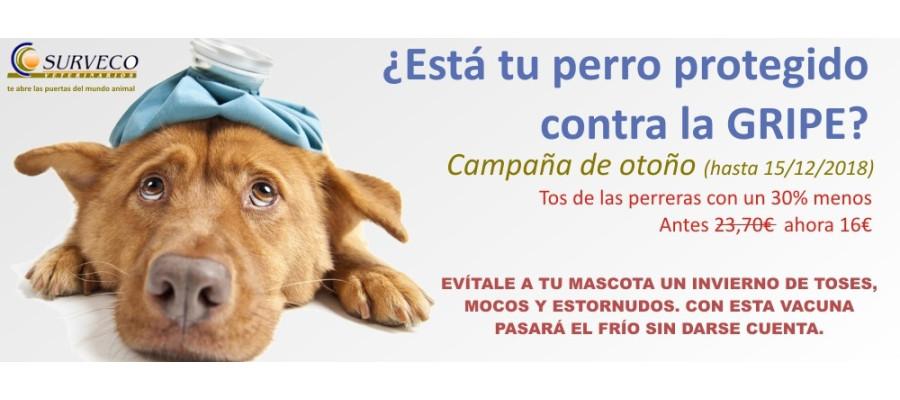 Gripe Canina - Surveco