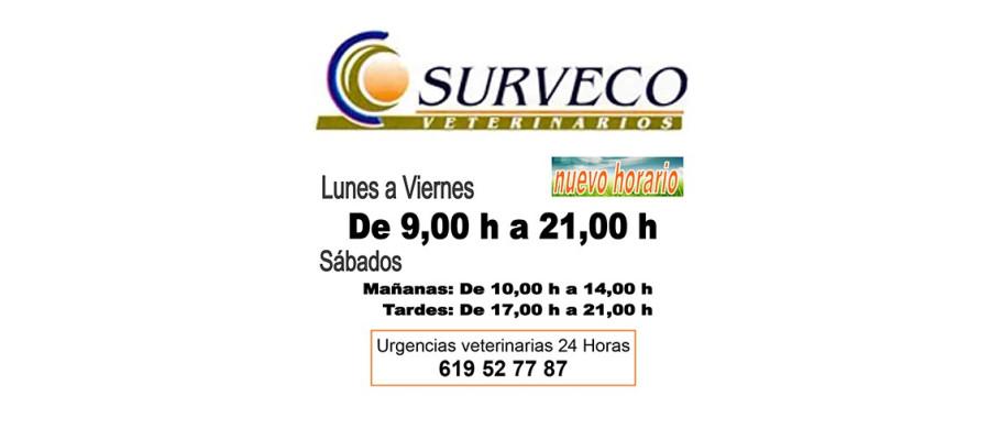 Nuevo Horario - Surveco